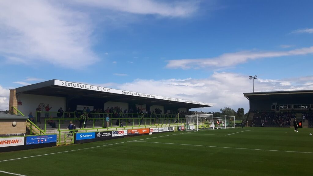 Terracing at the New lawn